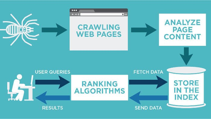 Search engines crawling, indexing and ranking explained